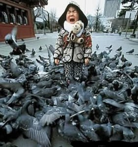 when_birds_attack_2