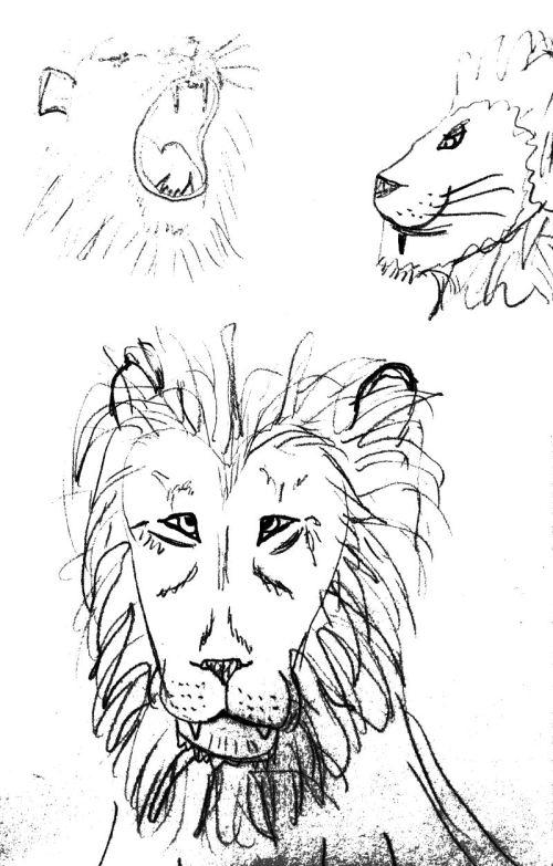 Study of Cave Lion Pride
